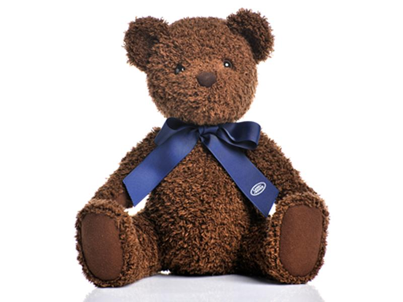 Teddy bear - Picture N.1